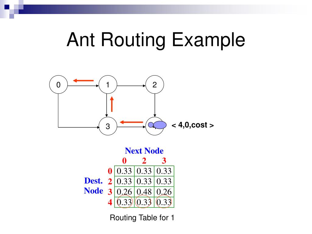 Ant Routing Example