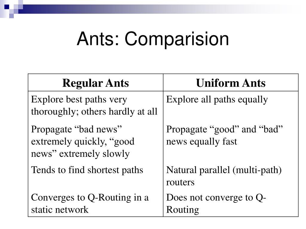 Ants: Comparision