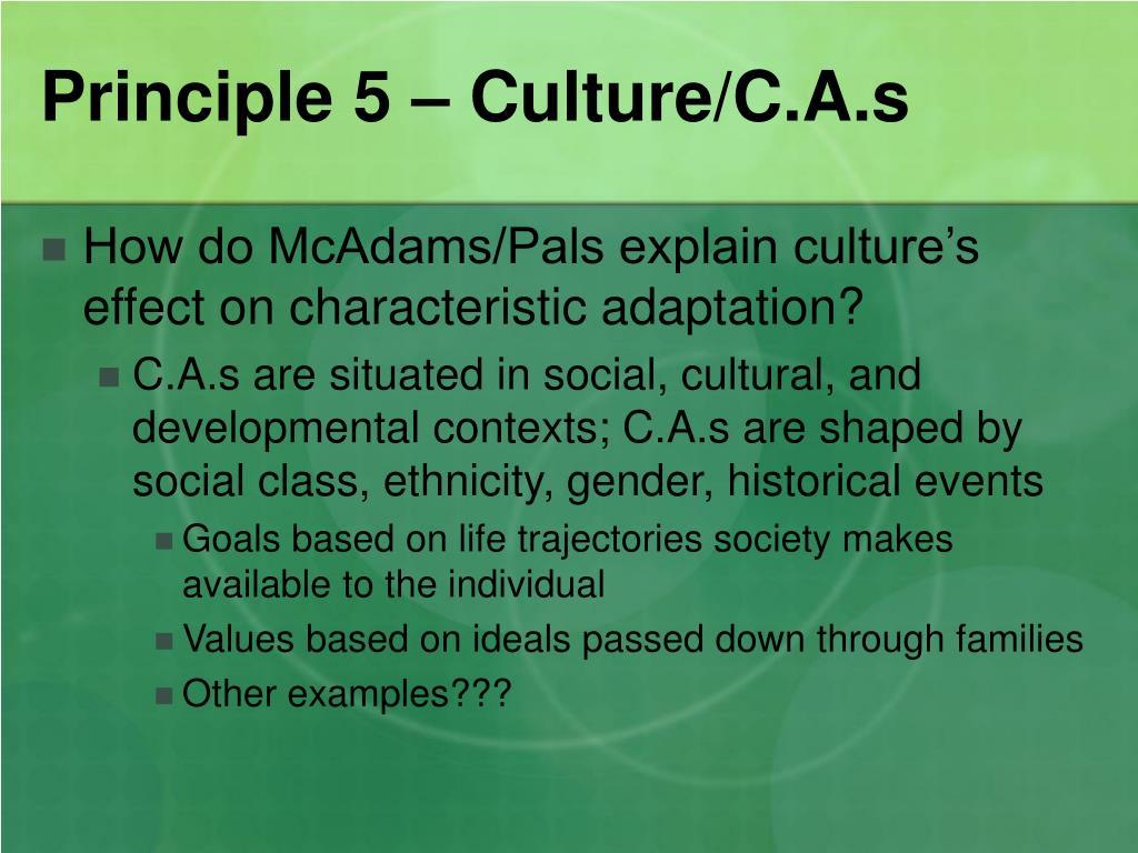 Principle 5 – Culture/C.A.s