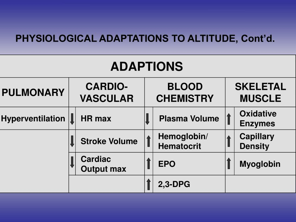 PHYSIOLOGICAL ADAPTATIONS TO ALTITUDE, Cont'd.