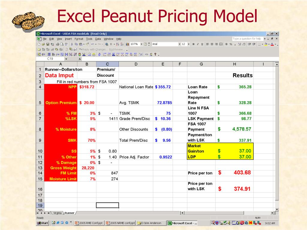 Excel Peanut Pricing Model