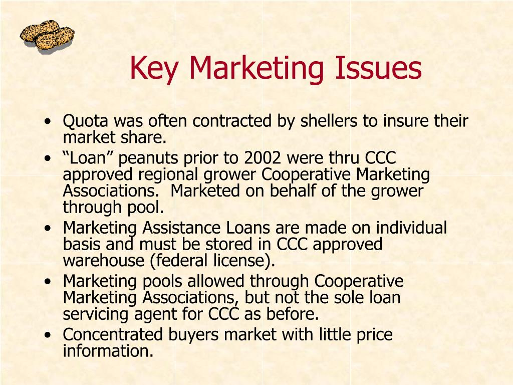 Key Marketing Issues