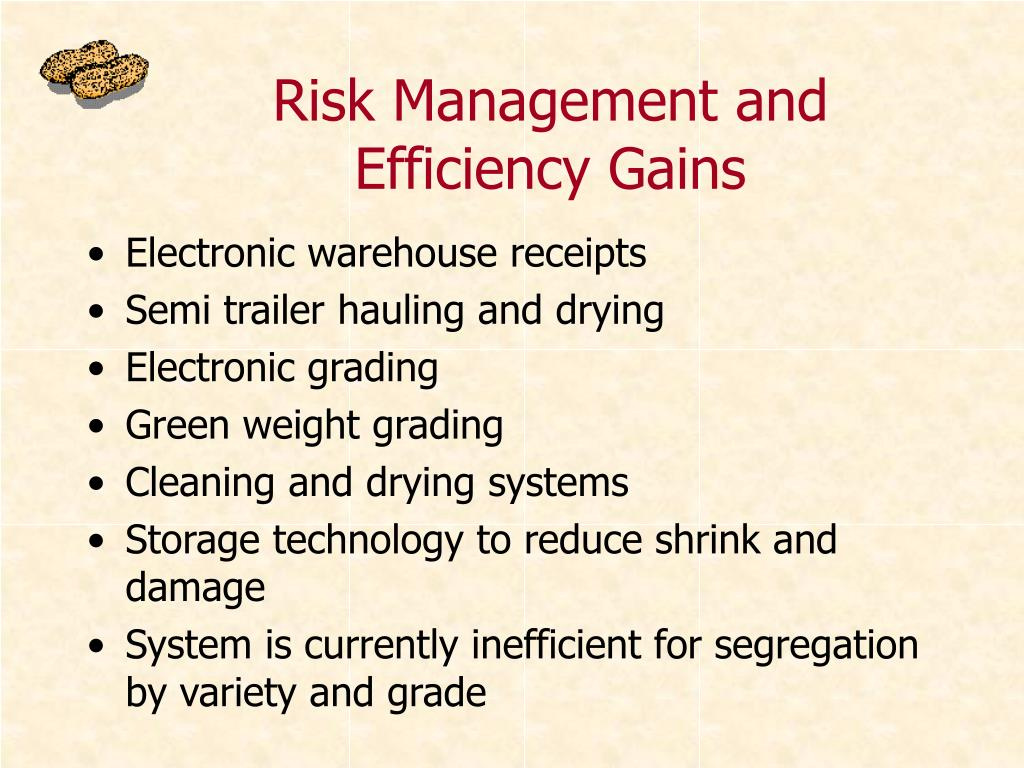 Risk Management and Efficiency Gains