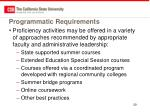 programmatic requirements2