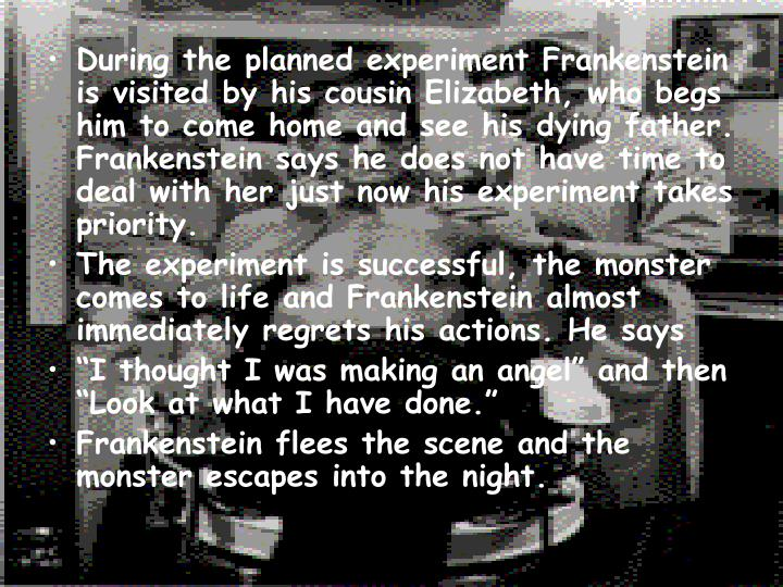 mary shelleys frankenstein 19 essay Exercises and activities related to frankenstein by mary shelley it includes fifteen lessons, supported by extra resource materials  19 test 20 key:.