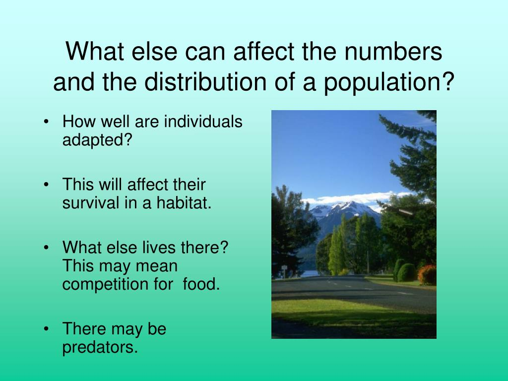 What else can affect the numbers and the distribution of a population?