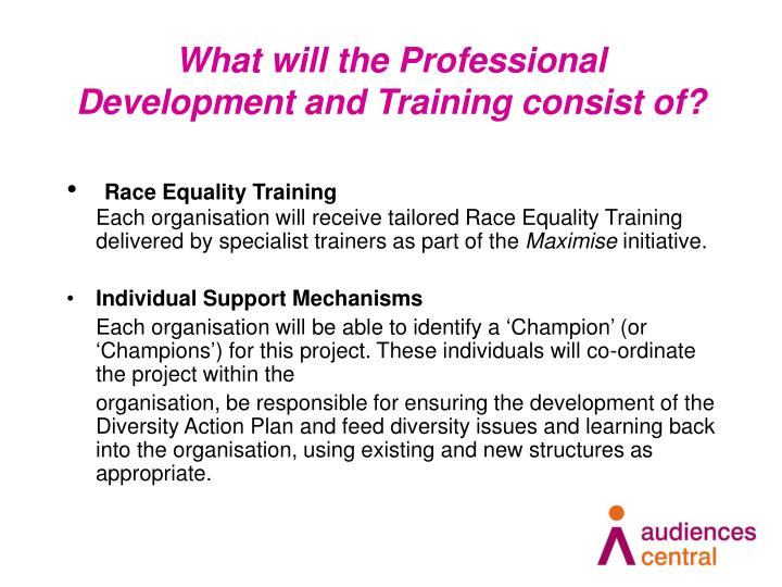 What will the Professional Development and Training consist of?