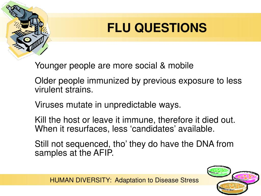 FLU QUESTIONS