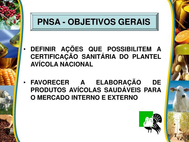 PNSA - OBJETIVOS GERAIS