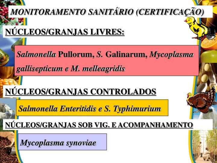 MONITORAMENTO SANITÁRIO (CERTIFICAÇÃO)