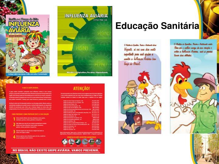 Educação Sanitária