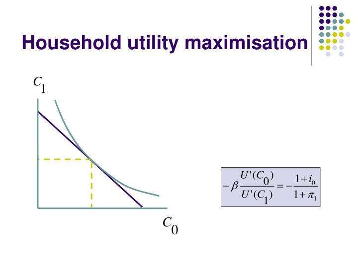 Household utility maximisation