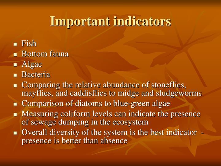 Important indicators