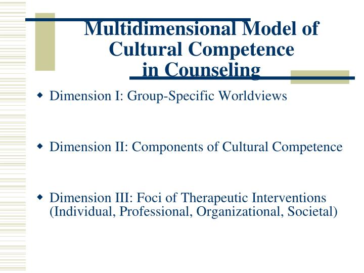 Multidimensional Model of Cultural Competence