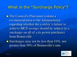 what is the surcharge policy