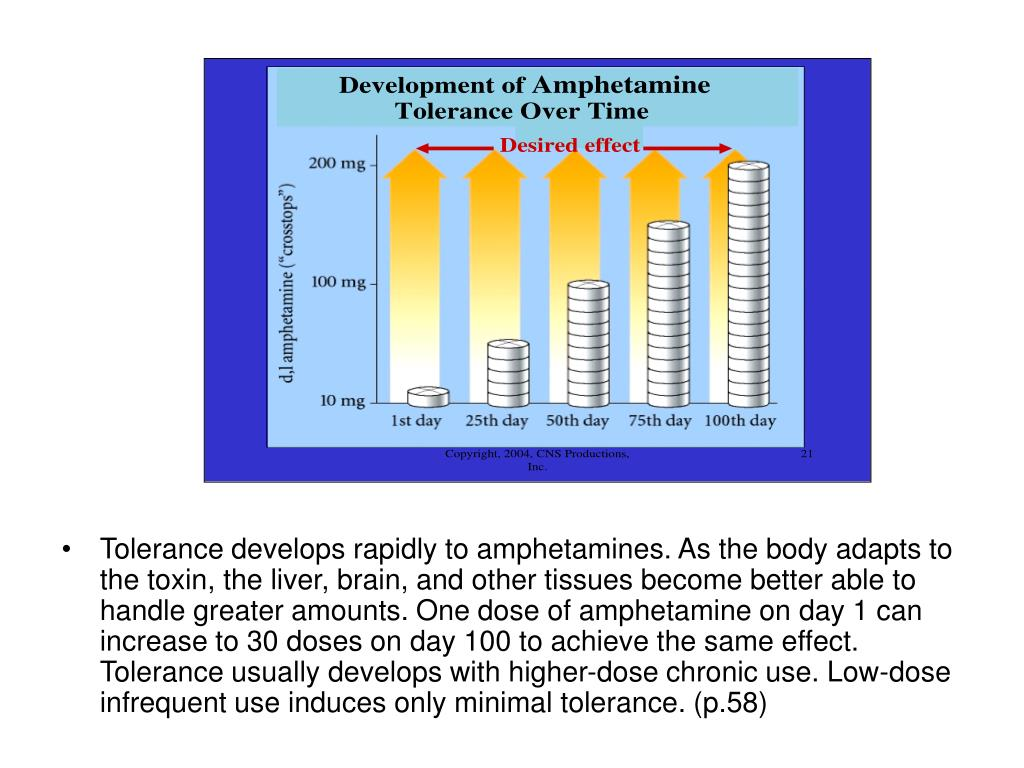Tolerance develops rapidly to amphetamines. As the body adapts to the toxin, the liver, brain, and other tissues become better able to handle greater amounts. One dose of amphetamine on day 1 can increase to 30 doses on day 100 to achieve the same effect. Tolerance usually develops with higher-dose chronic use. Low-dose infrequent use induces only minimal tolerance. (p.58)