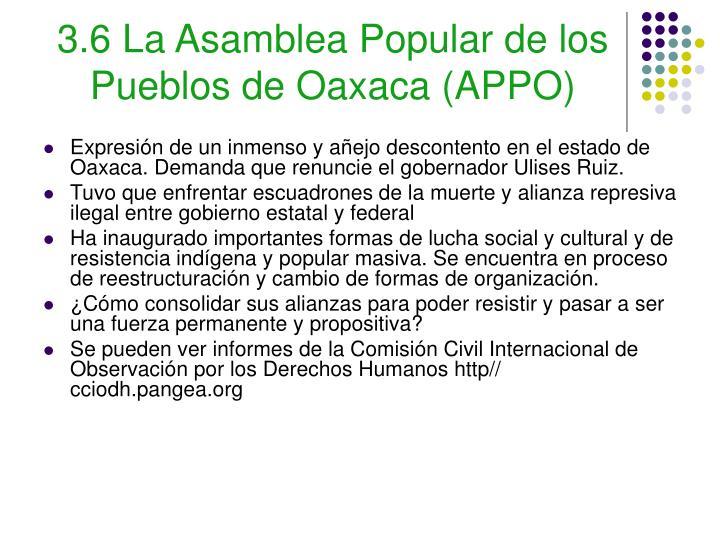 3.6 La Asamblea Popular de los Pueblos de Oaxaca (APPO)