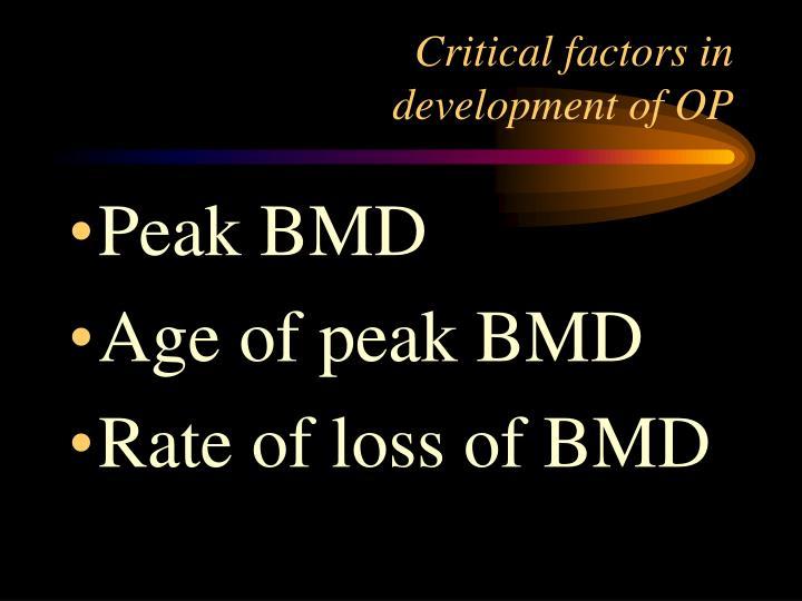 Critical factors in