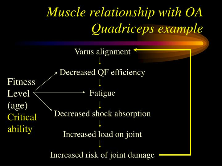 Muscle relationship with OA
