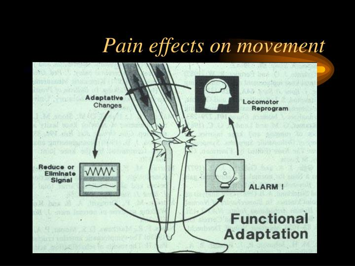 Pain effects on movement