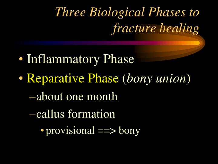 Three Biological Phases to fracture healing