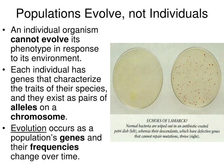 Populations Evolve, not Individuals