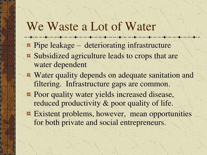 We Waste a Lot of Water