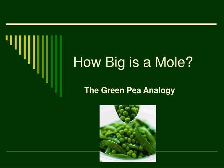 How big is a mole
