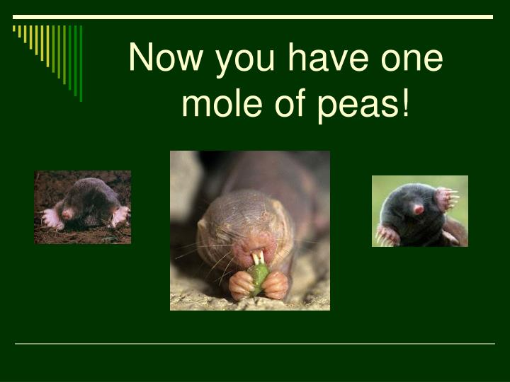 Now you have one mole of peas!