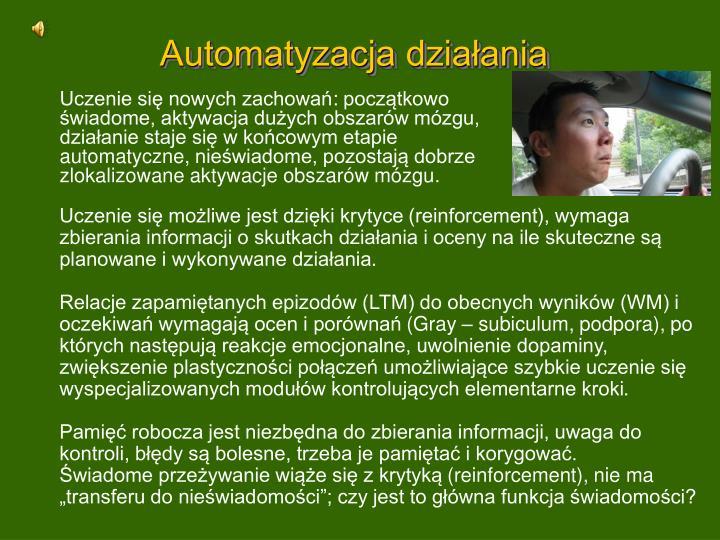 Automatyzacja działania