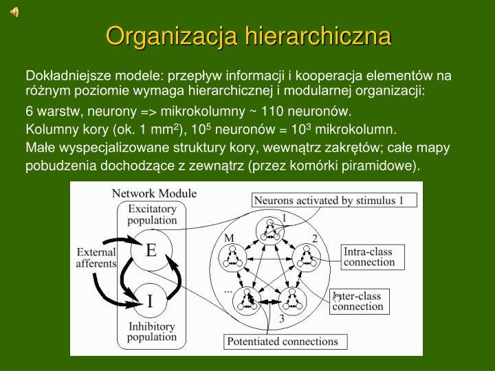 Organizacja hierarchiczna