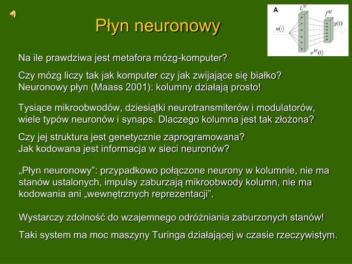 Płyn neuronowy