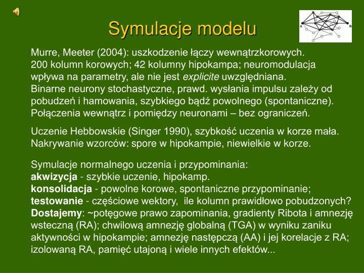 Symulacje modelu