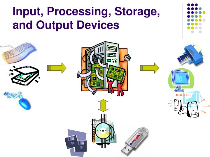 Input, Processing, Storage, and Output Devices