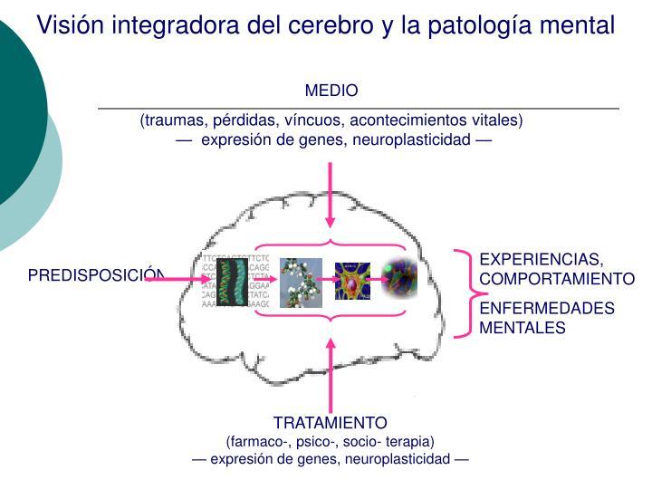 Visión integradora del cerebro y la patología mental