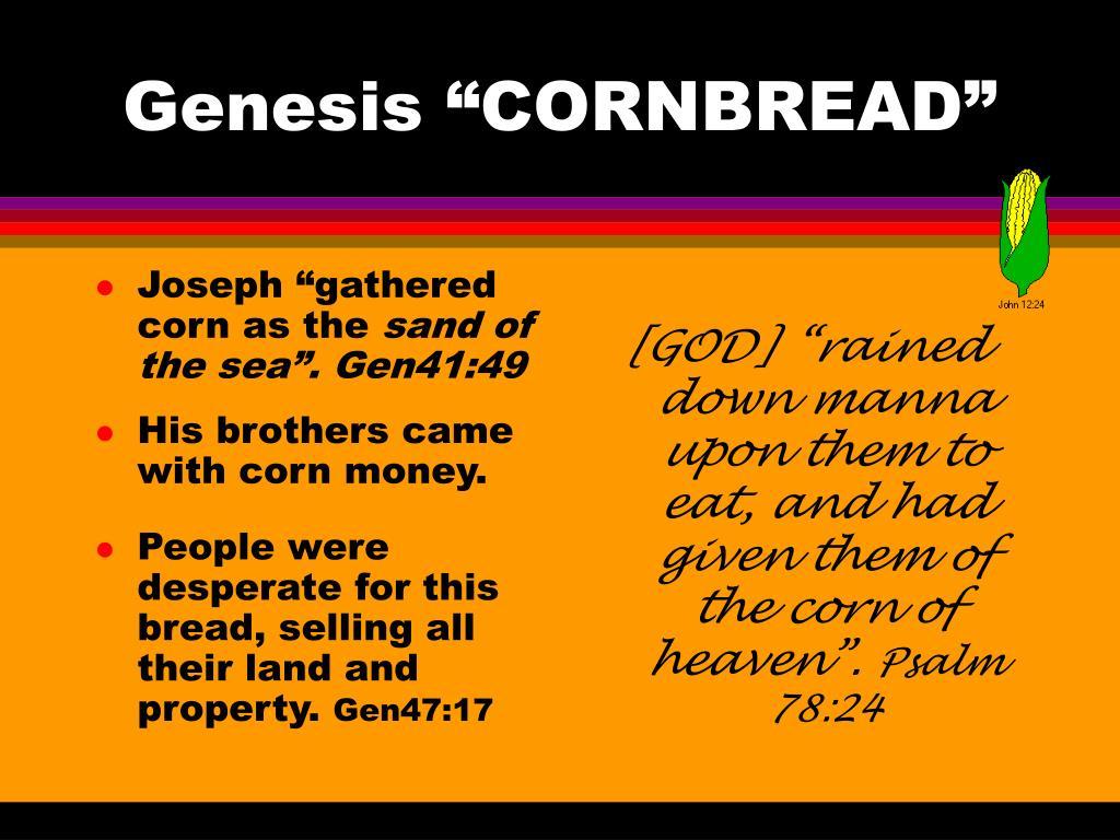 "Joseph ""gathered corn as the"