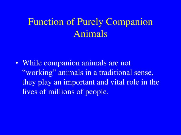 Function of Purely Companion Animals