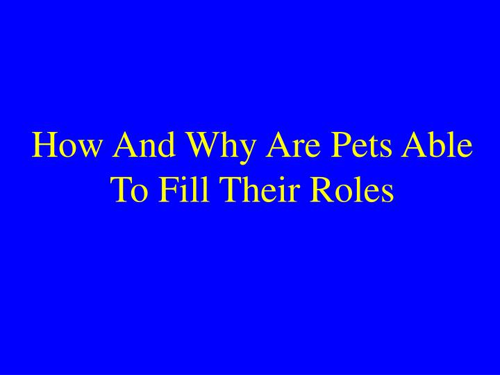 How And Why Are Pets Able