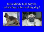 miss mindy linn skyles which dog is the working dog