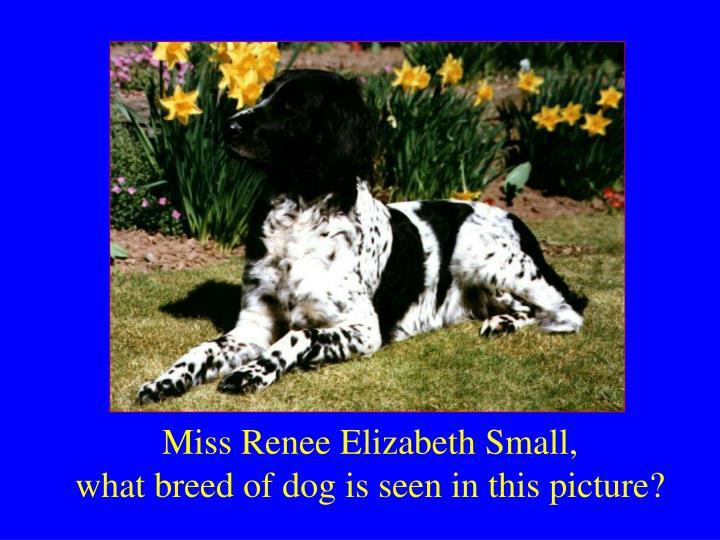 Miss Renee Elizabeth Small,