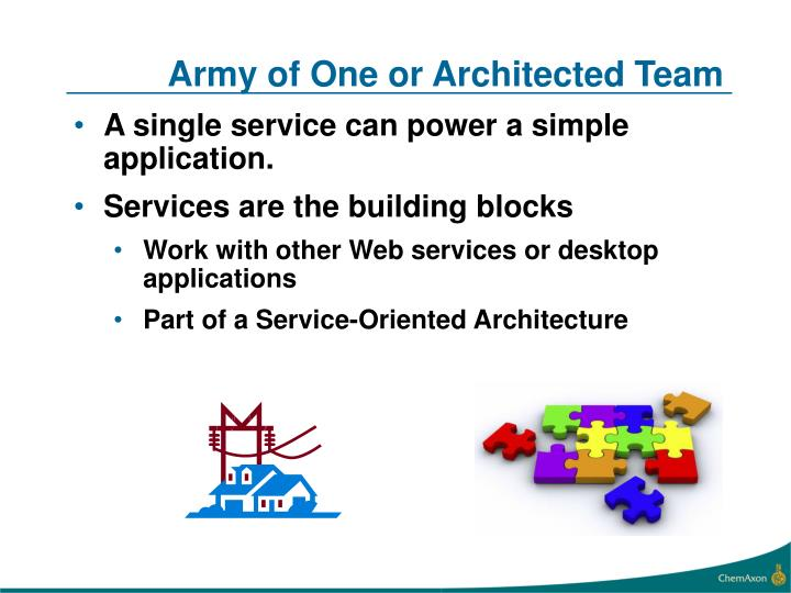 Army of One or Architected Team