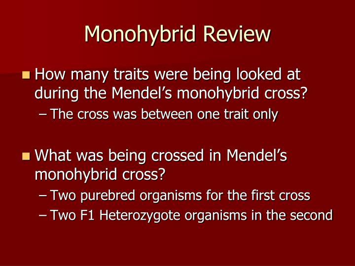 Monohybrid Review