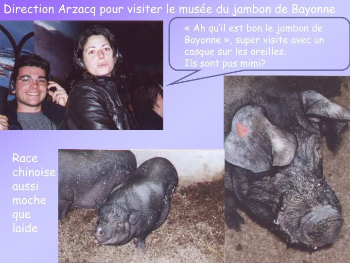 Direction Arzacq pour visiter le musée du jambon de Bayonne