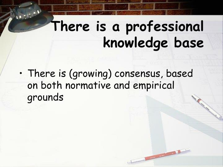 There is a professional knowledge base