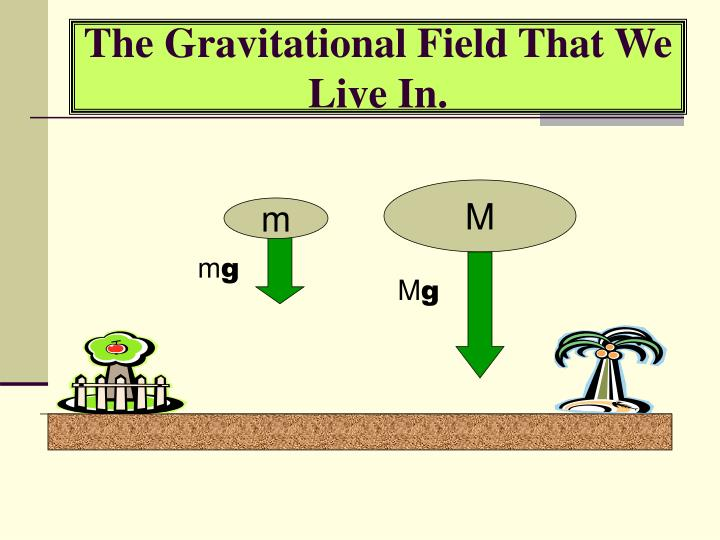 The Gravitational Field That We Live In.