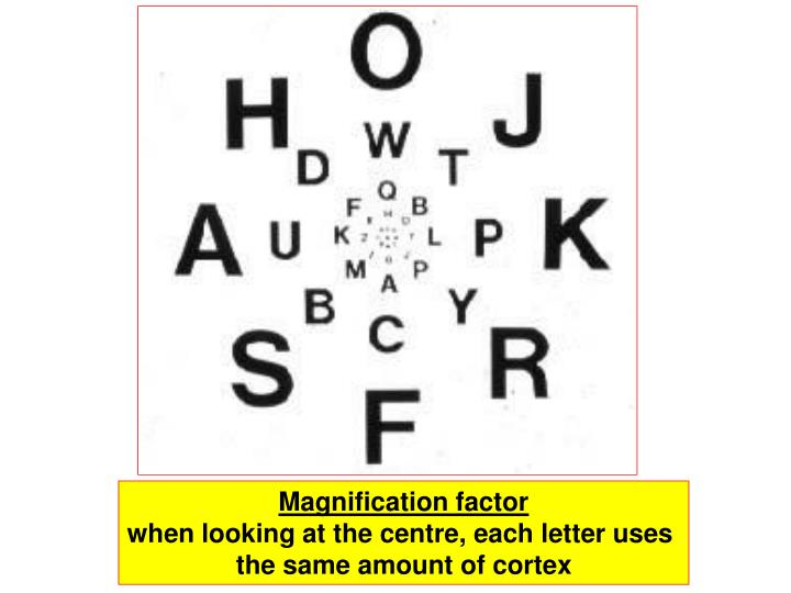 Magnification factor