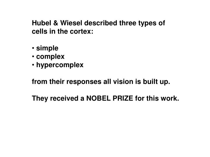 Hubel & Wiesel described three types of cells in the cortex: