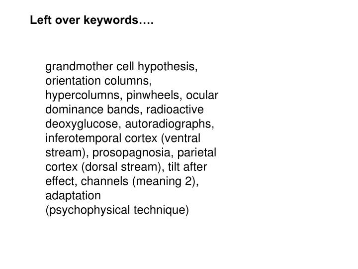 Left over keywords….
