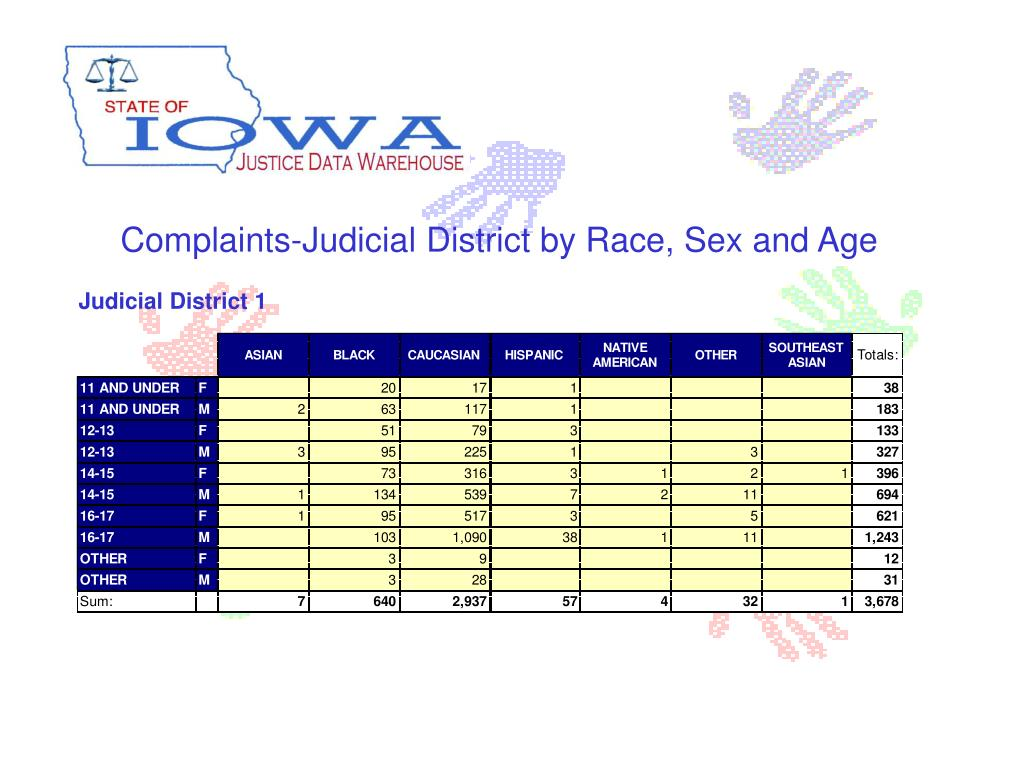 Complaints-Judicial District by Race, Sex and Age