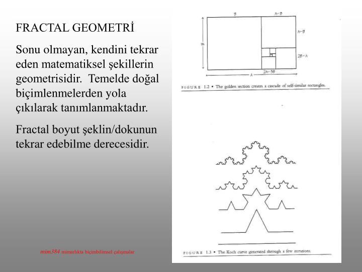 FRACTAL GEOMETRİ